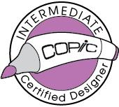 Intermediate Certified Designer