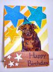 Kathy's-Pup
